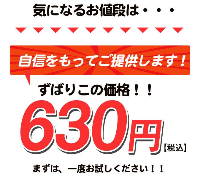 ずばり630円でご提供