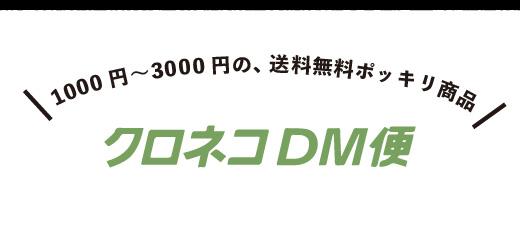 1000円〜3000円の、送料無料ポッキリ商品